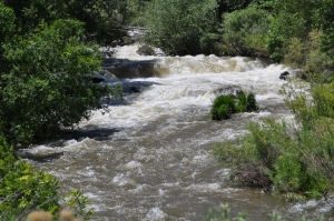 Flood Stage Water Flow