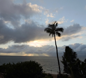 Maui Sunrise & Surf